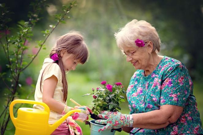 Child and elderly woman gardening